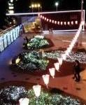 H26桜祭002夜景